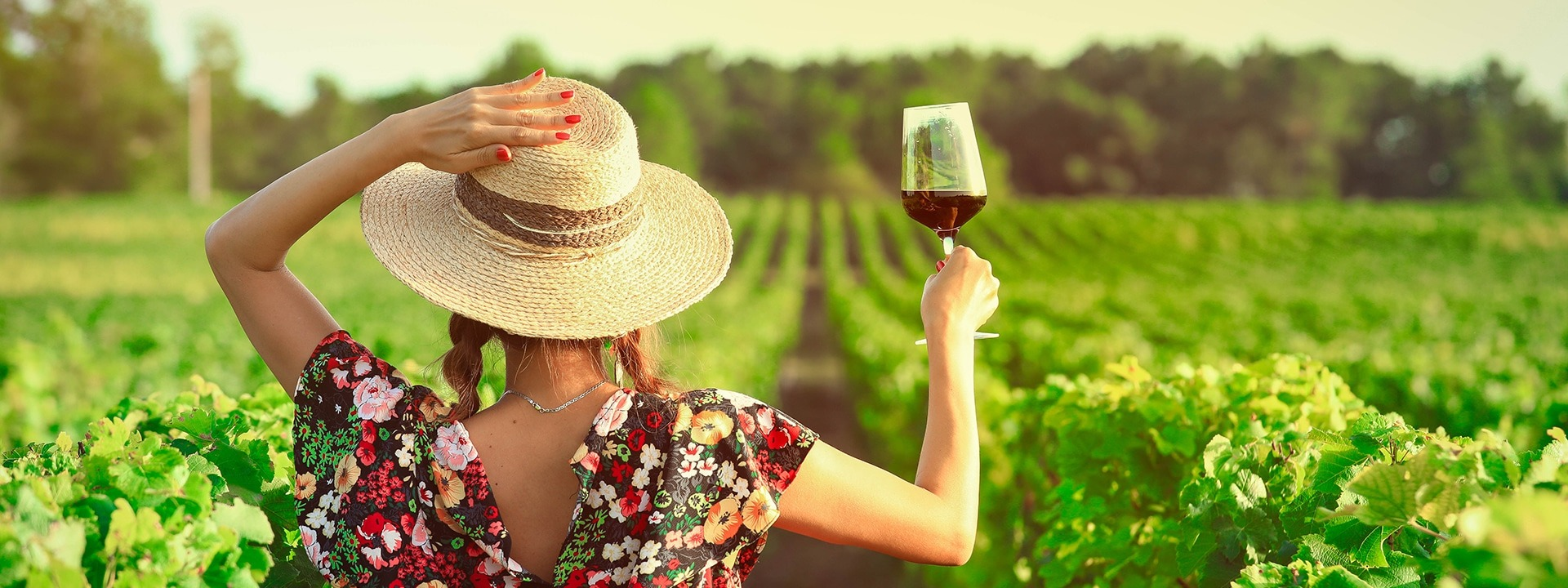 Wine farms are back in business